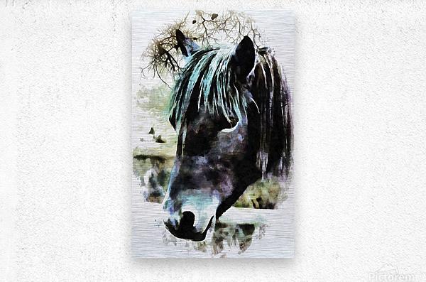 Horse Spirit Guide  Metal print