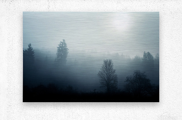 Sunrise in the misty forest  Metal print