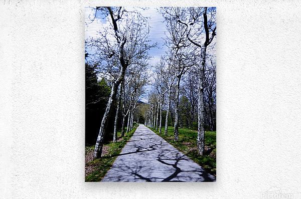 Casita del Principe 6 of 7 - Park and Gardens - The Royal Monastery of San Lorenzo de El Escorial - Madrid Spain  Metal print