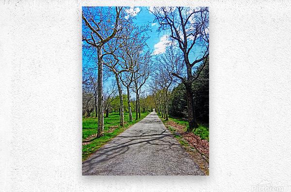 Casita del Principe 1 of 7 - Park and Gardens - The Royal Monastery of San Lorenzo de El Escorial - Madrid Spain  Metal print
