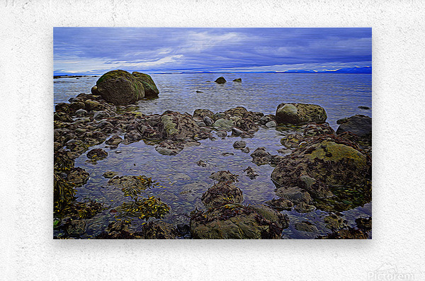 Tranquility at Low Tide  Metal print
