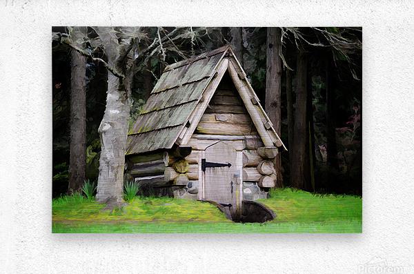 Old Root House  Metal print