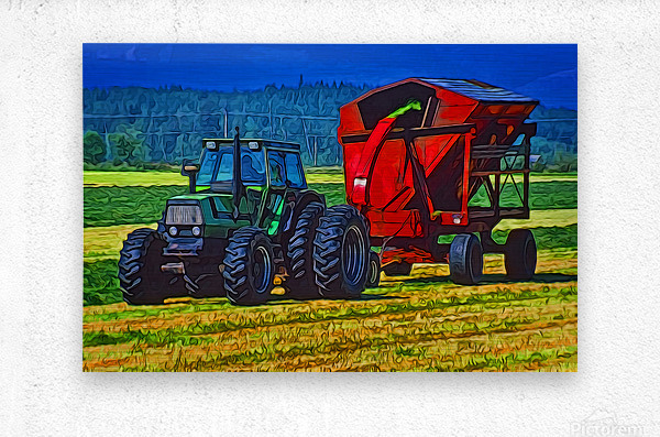 Making Hay  Metal print