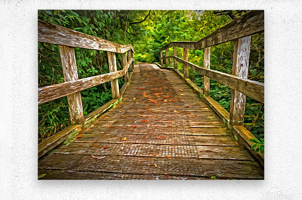 Bridge in the Sanctuary  Metal print