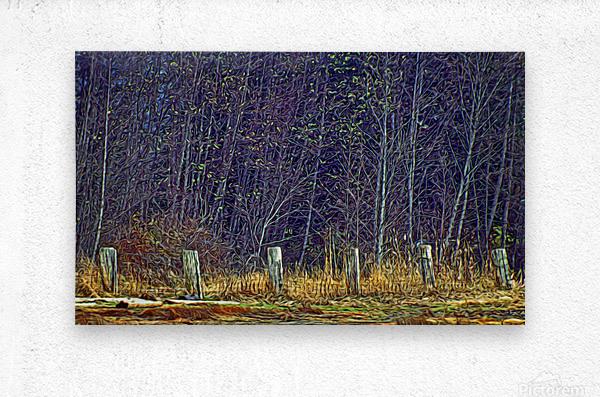 Weathered Fence Posts  Metal print