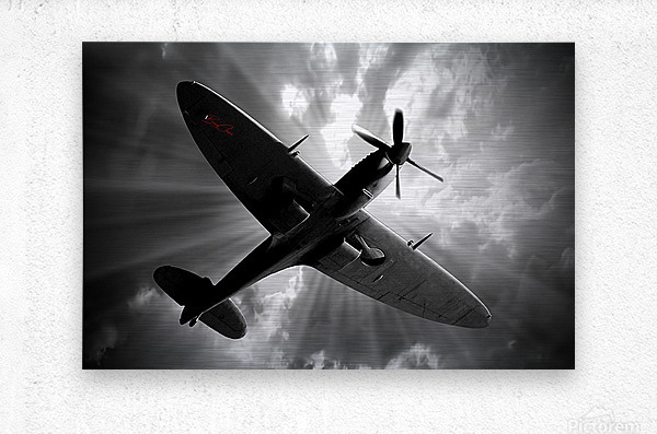 Spitfire Angel Limited Edition 50 Prints only  Metal print