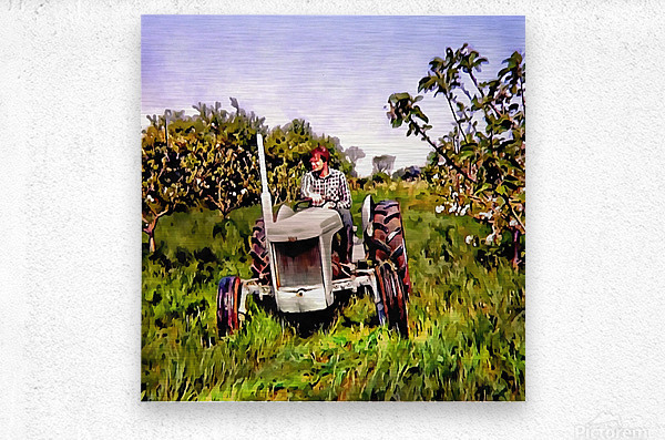 One Man And His Fergie Tractor  Metal print