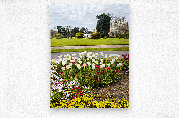 Botanic Garden II  Metal print