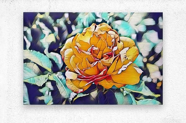 Rose in Yellow  Metal print