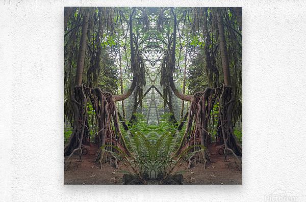 Grandmother Tree  Metal print
