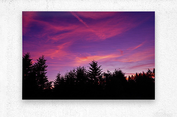 Summer Sunset Pacific Northwest United States  Metal print