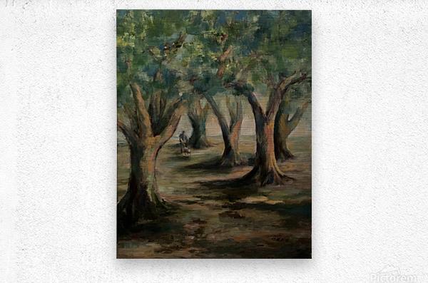 Oak trees  Metal print