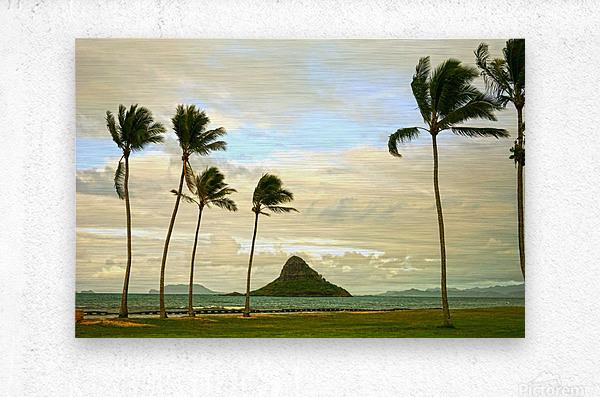 The Island of Mokoli  i from Oahu at Sunset  Metal print