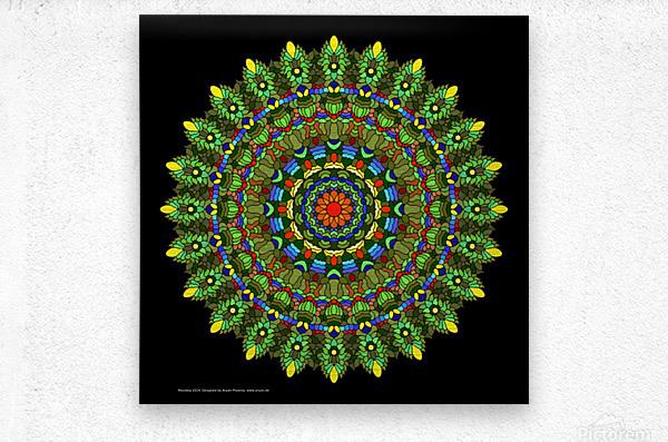 Mandala 2014  Metal print