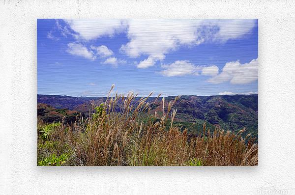 Beautiful View in Waimea Canyon on the Island of Kauai  Metal print
