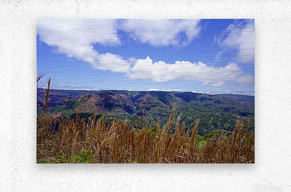 Beautiful View to Distant Waipoo Falls in Waimea Canyon on the Island of Kauai  Metal print