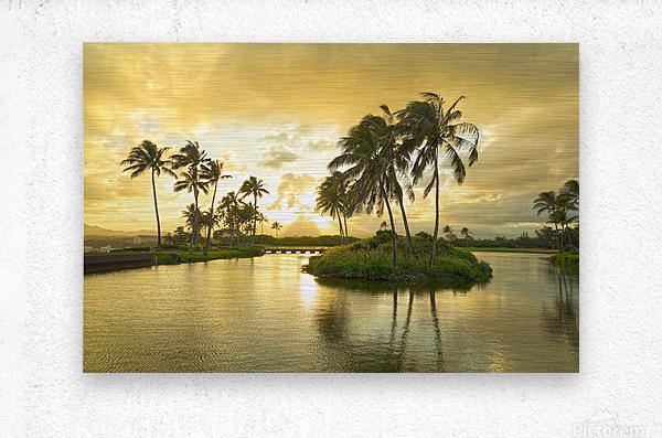 Shadows and Light as the Sun Sets in Kauai 2 of 2  Metal print