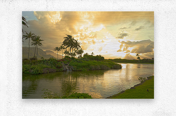 Shadows and Light as the Sun Sets in Kauai 1 of 2  Metal print