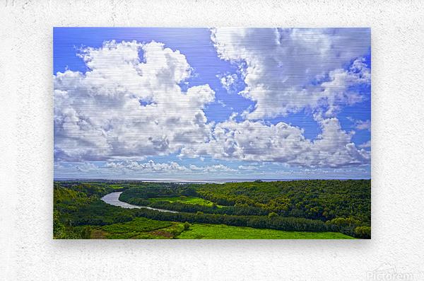 On the Wailua Heritage Trail   Wailua River to Wailua Beach 1 of 2  Metal print