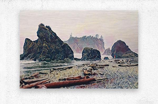 Ruby Beach  Metal print