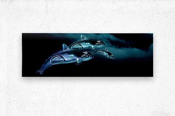 ORCAS LUNARES WIDE 8  Metal print