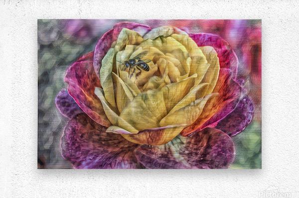 Beezy Blossom  Metal print