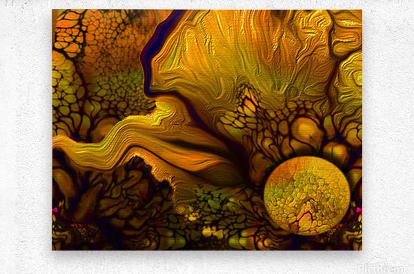 Pollens Summer Glow 2  Metal print
