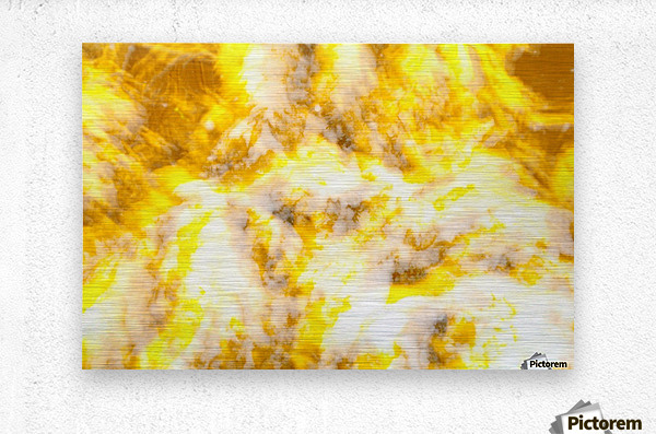 IMGP2185  Metal print