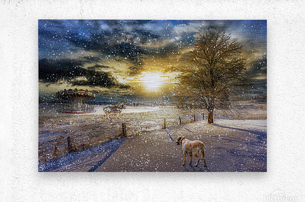 A Magical Winter Night  Metal print