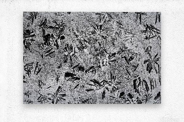 RA005  Metal print