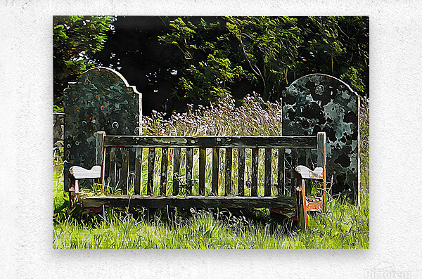 Time for Contemplation  Metal print