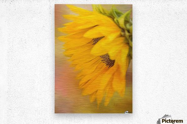 Bring Sunshine - Sunflower Art by Jordan Blackstone  Metal print