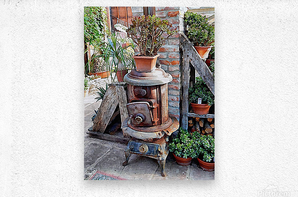 Old Wood Stove With Succulents  Metal print