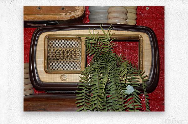 Old Radio Used For Succulent Display  Metal print