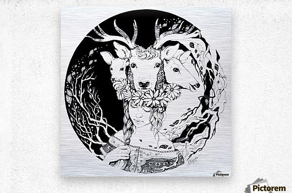 Charpatian Soul  Metal print
