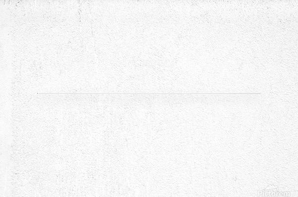 Banner 1501  Metal print