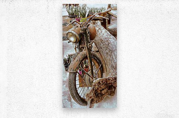 Old Rusty Motorbike Against Tree Stump  Metal print