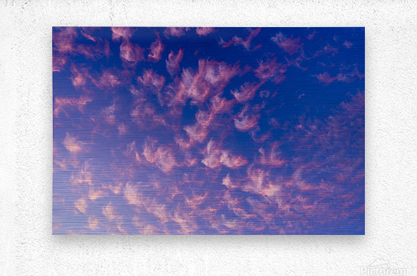 Pink and White Cotton Candy Skies over the Pacific Northwest   Abstract Expressionist Robert Stanek Original  Metal print