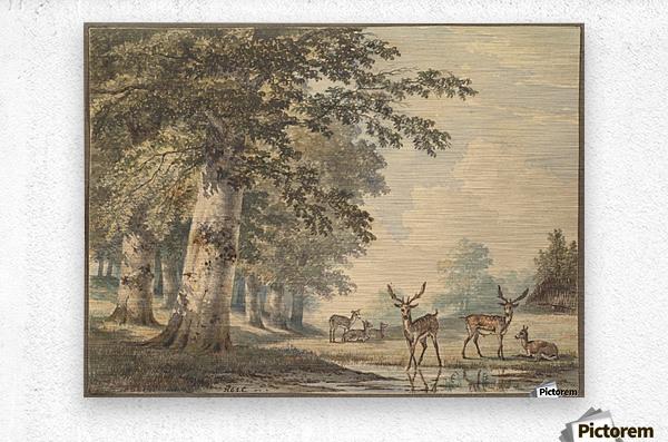 Deer under beech trees in Winter  Metal print