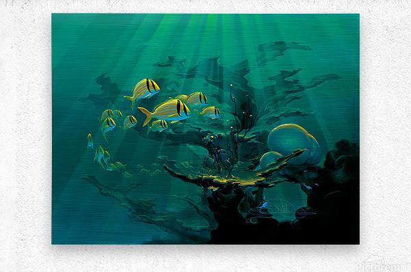 Atlantic Reef  Metal print