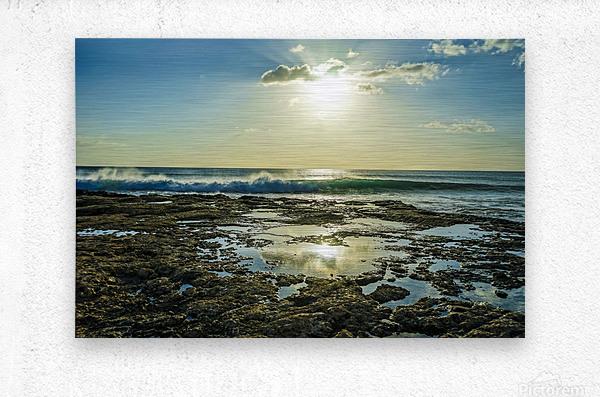 Waves Breaking on the Sea Shore   Hawaii  Metal print