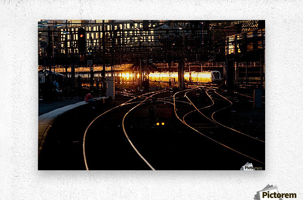 Golden train  Metal print