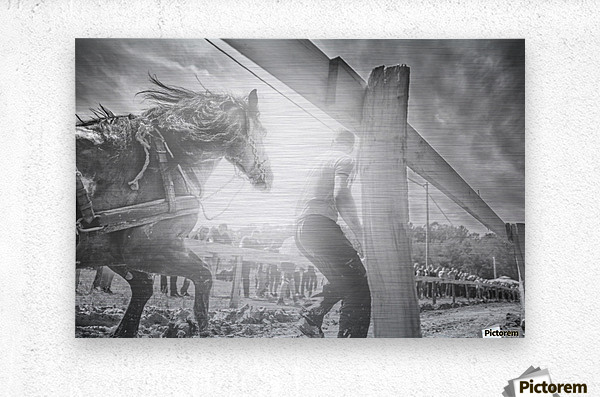 Man and horse   Metal print