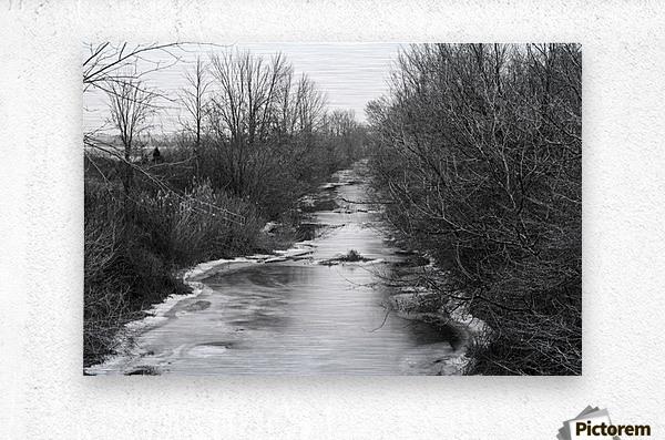 Frozen Wetlands  Metal print