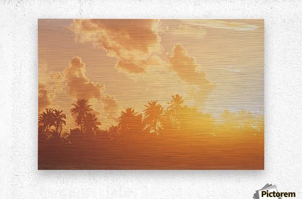 landscape_2_0097  Metal print