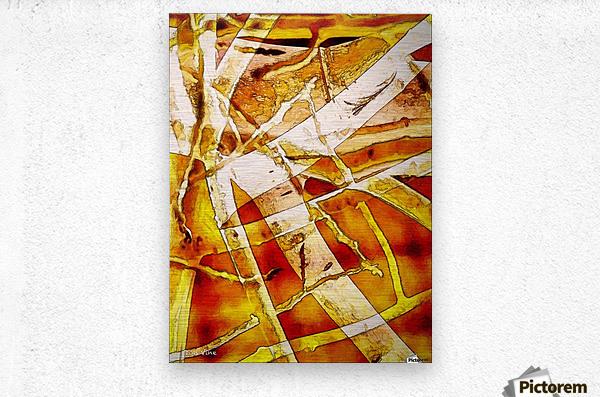Aspen Near Cabin_141124_17001 HXSYV  Metal print