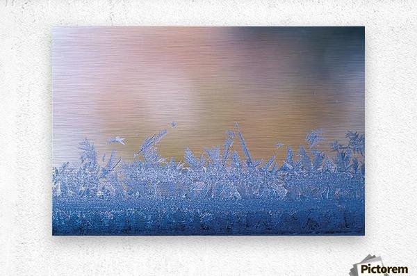 landscape_2_0126  Metal print