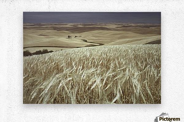 landscape_2_0600  Metal print