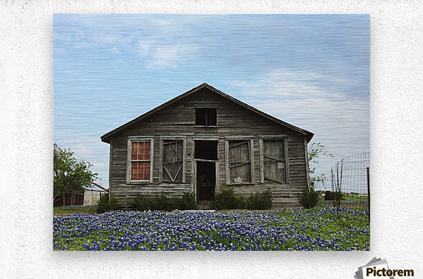 Blue Bonnet Shack  Metal print