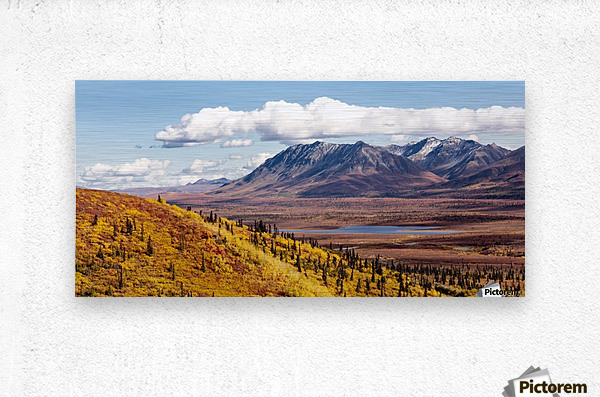 Scenic view of peak fall colors along Matanuska Valley, Southcentral Alaska  Metal print
